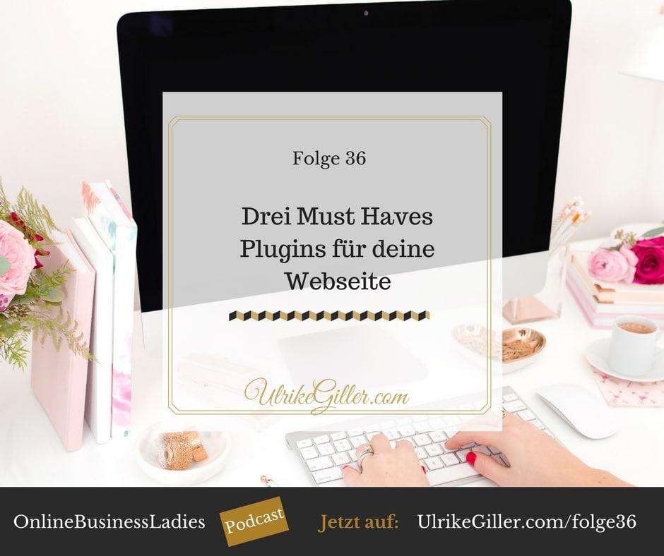 Drei Must Haves Plugins für deine Webseite